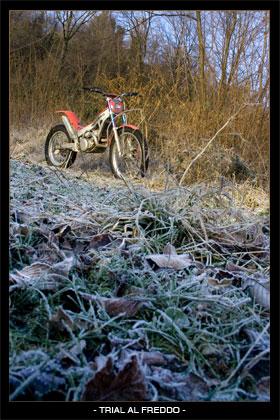 trial al freddo